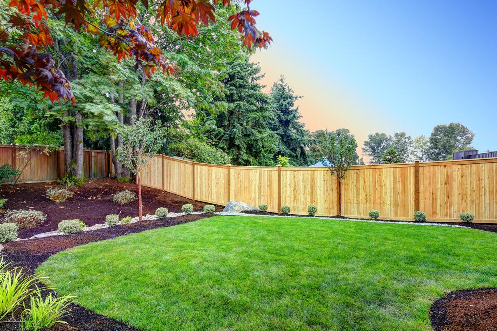 Een nieuwe tuin voor in de zomer? Met deze tips lukt je dat prima!